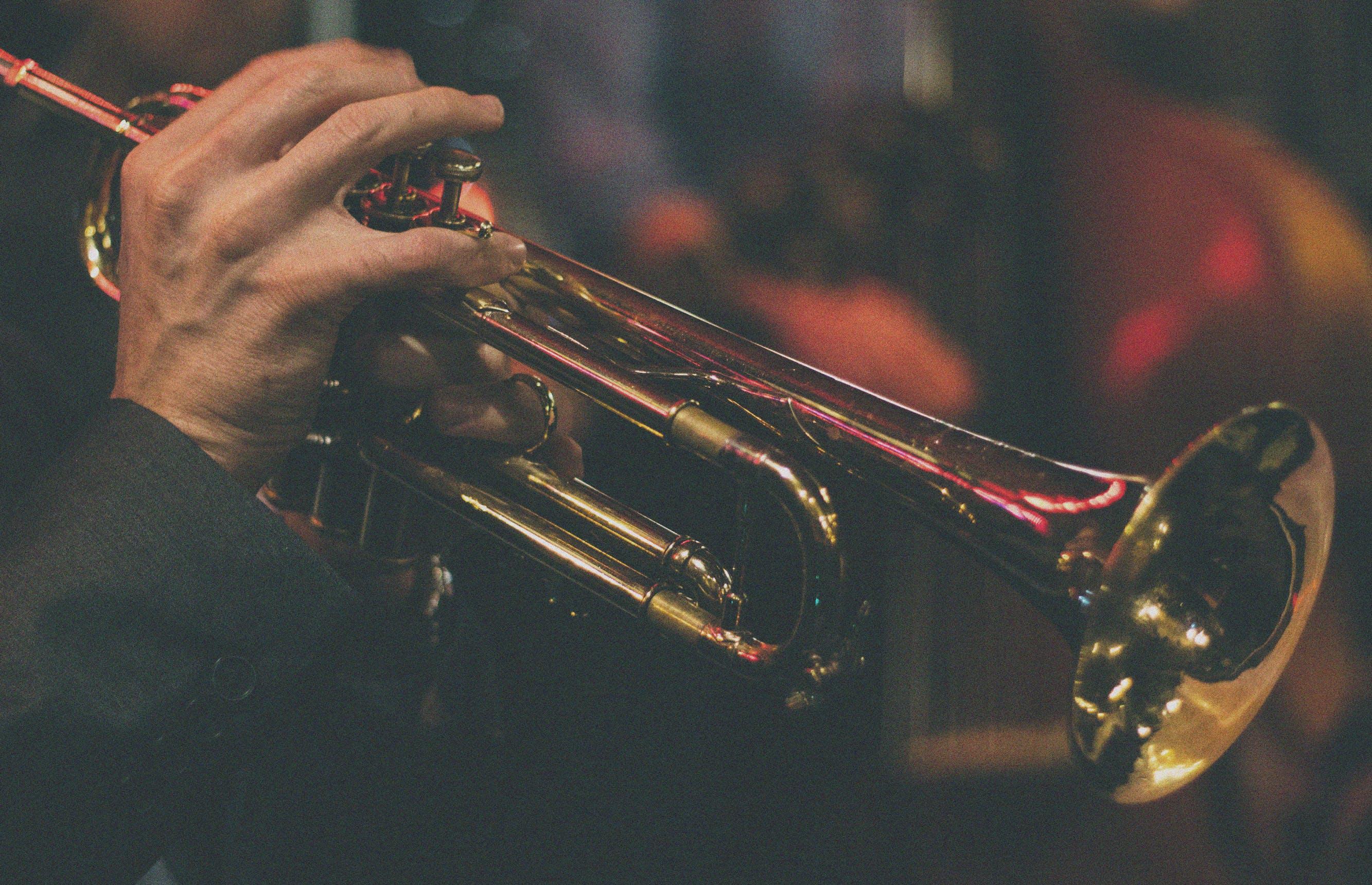 Gent en El Negocito Records scheren hoge toppen in All About Jazz-polls