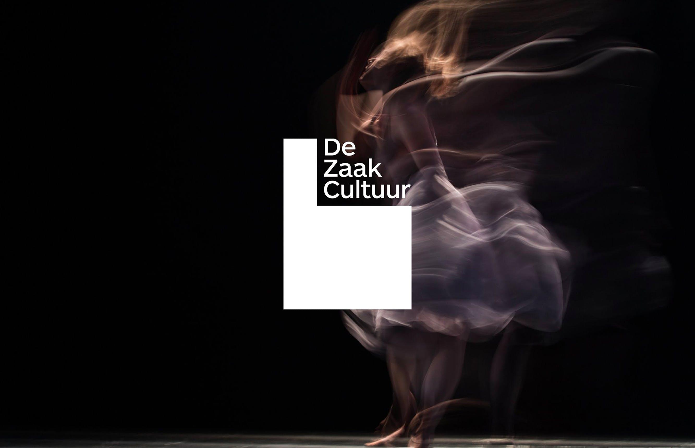 De Zaak Cultuur: schrijf je in en denk mee na over de toekomst van onze sector